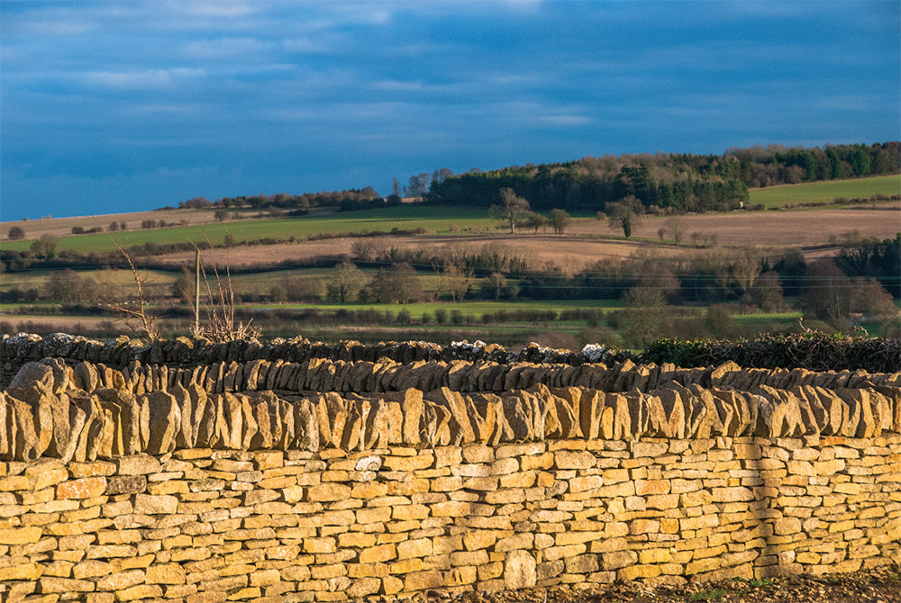 Cotswold drystone wall