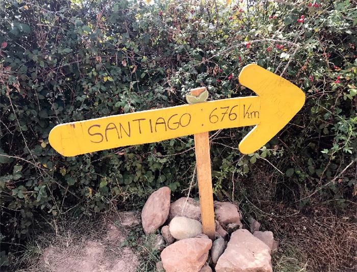 Walking the Camino Frances